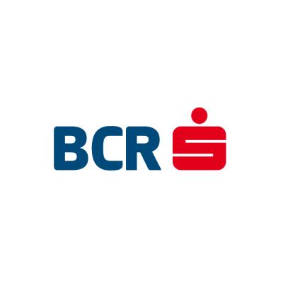 Loginro job Tech Lead Back-End - IT Digital Division@BCR