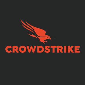 Meet virtually CrowdStrike Romania Team